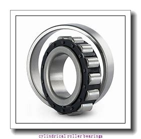 10.236 Inch | 260 Millimeter x 12.598 Inch | 320 Millimeter x 1.102 Inch | 28 Millimeter  CONSOLIDATED BEARING NCF-1852V  Cylindrical Roller Bearings