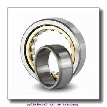 2.756 Inch | 70 Millimeter x 4.921 Inch | 125 Millimeter x 1.22 Inch | 31 Millimeter  CONSOLIDATED BEARING NU-2214 M  Cylindrical Roller Bearings
