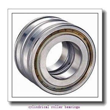 2.165 Inch | 55 Millimeter x 3.937 Inch | 100 Millimeter x 0.984 Inch | 25 Millimeter  CONSOLIDATED BEARING NCF-2211V  Cylindrical Roller Bearings